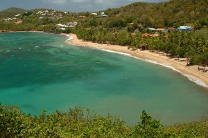 plage-anse-l-etang-tartane-martinique